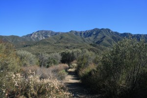 Hiking is a must when visiting the majestic scenery of Ojai, CA.